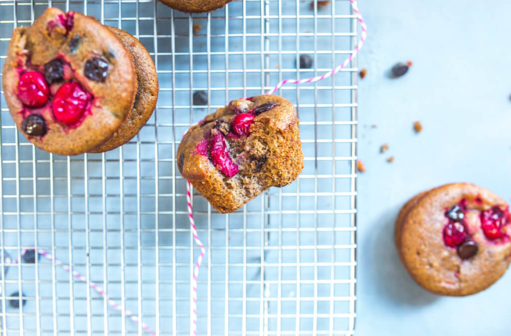 Flourless Cranberry Chocolate Muffins (Paleo) via Food by Mars
